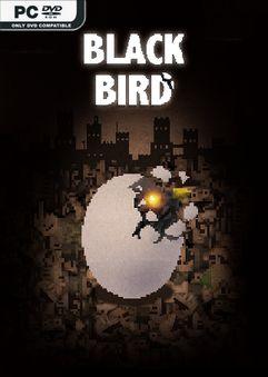 Black Bird-ALI213