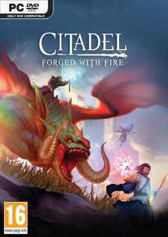 Citadel Forged With Fire Build 5059419